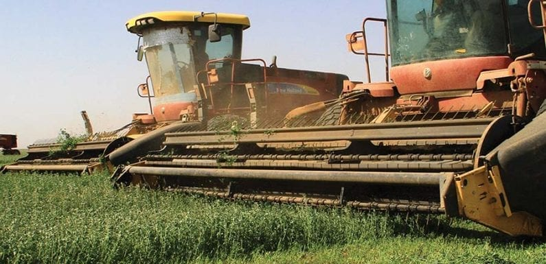 AfDB approves US$75 million to Sudan's food and agro company DAL Group Co.