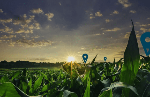 Agritech start-up Lentera to hold fundraising for expansion of solutions to farmers