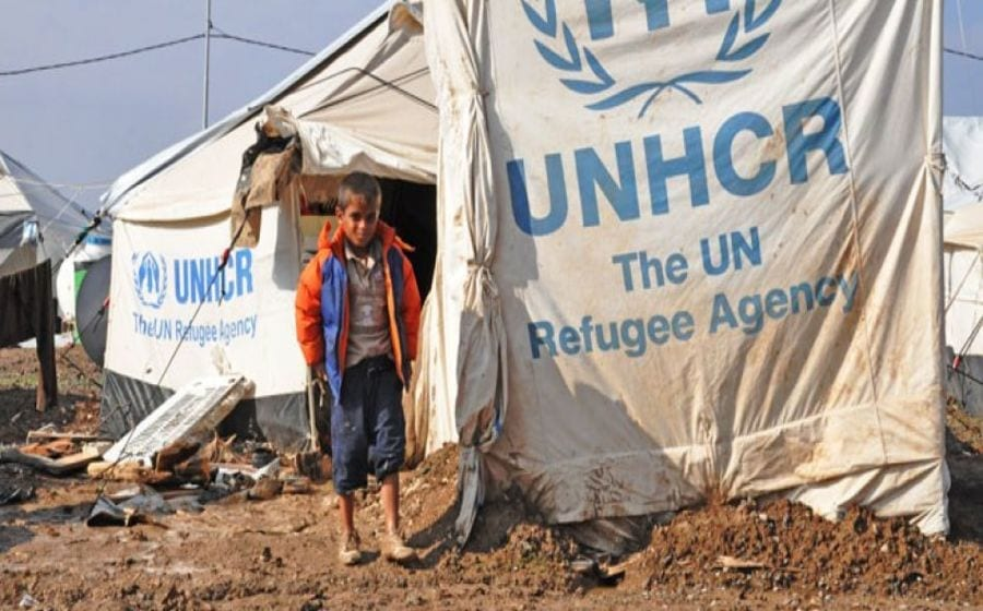 UNHCR launches sustainable energy strategy to minimize environmental impact