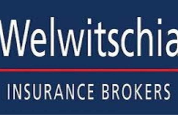 Elaine Schlechter named new CEO of Welwitschia Insurance Brokers