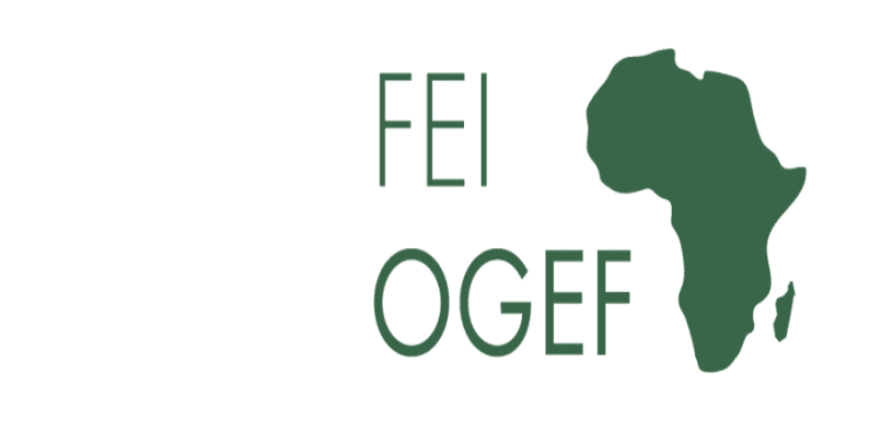AfDB-sponsored off-grid energy access fund reaches final equity close