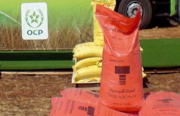 Leading phosphate company In Morocco set to launch operations in Romania